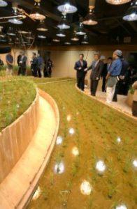 2月24日は何の日【小泉純一郎首相】地下農場を見学