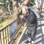 【東日本大震災から5年】