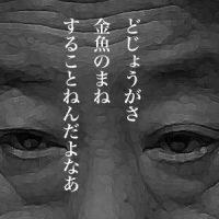 8月29日のできごと(何の日) 野田佳彦氏、民主党新代表に選出